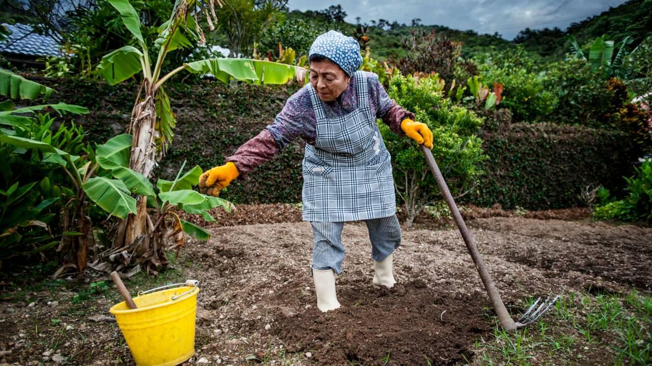 Japon : les secrets de santé des centenaires d'Okinawa