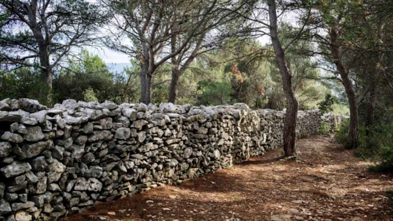 Six choses à savoir sur la Provence