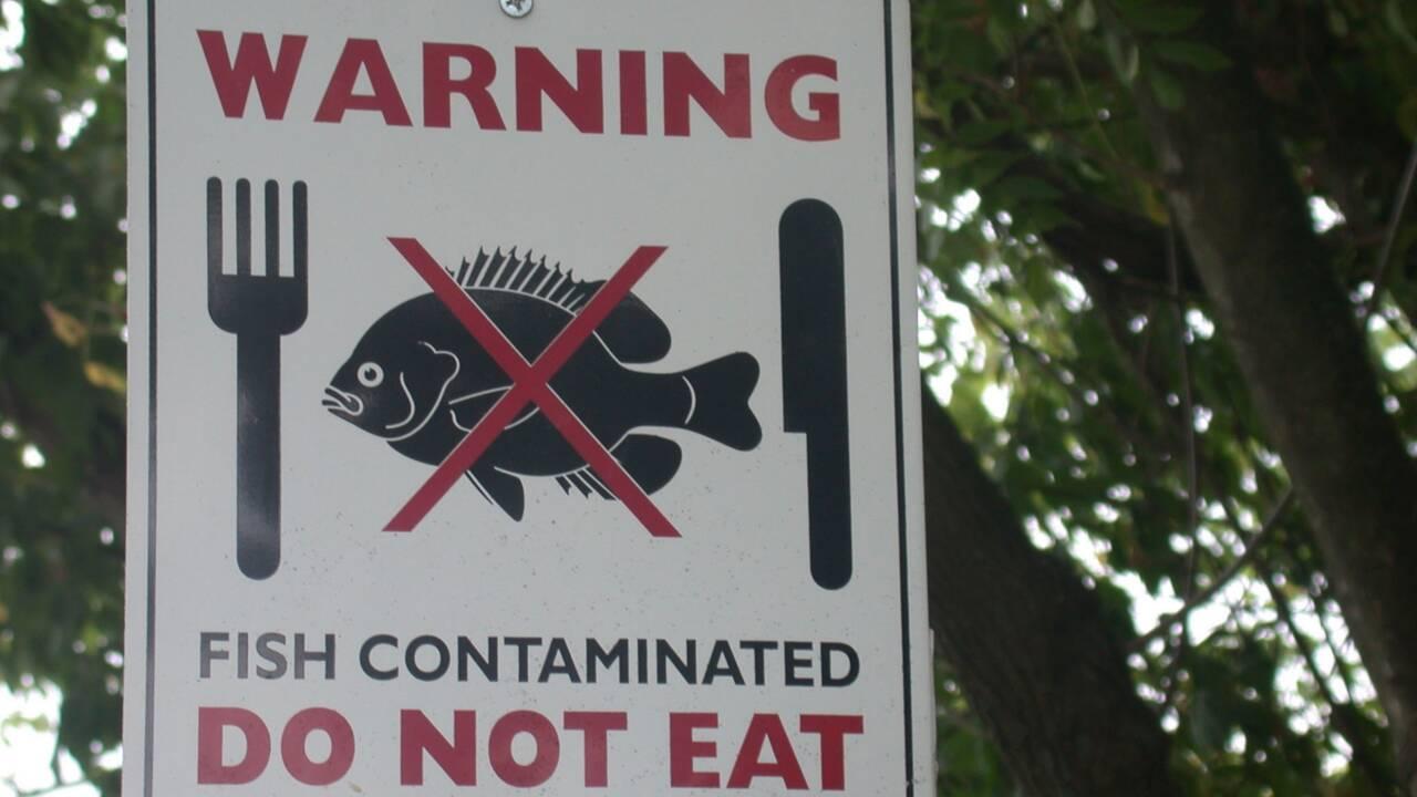 PCB, un produit interdit mais une pollution persistante