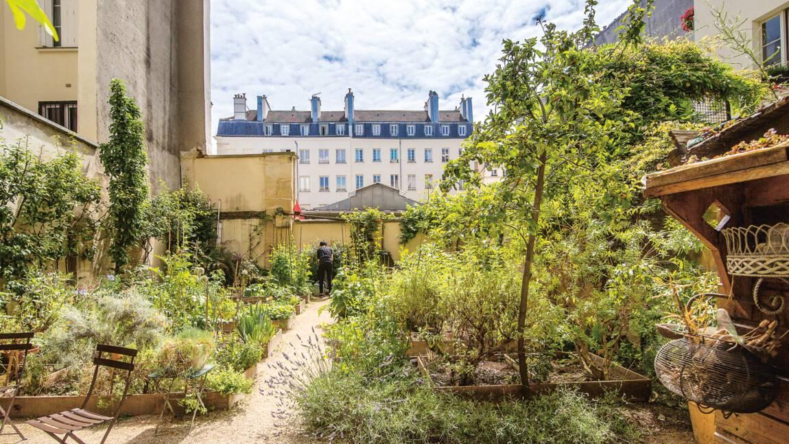 PHOTOS - À la découverte des jardins partagés de Paris