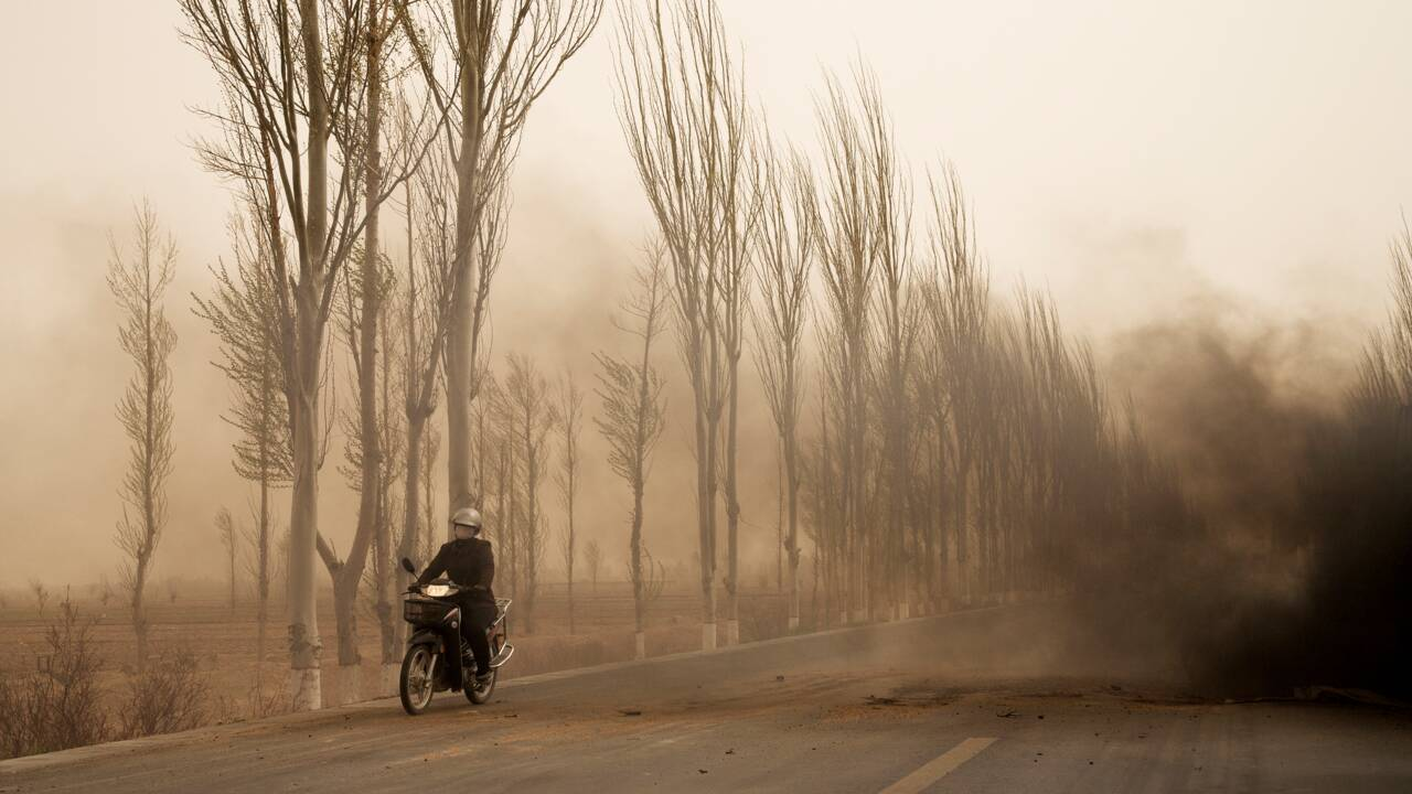 PHOTOS – Planète : le prix Pictet fête ses 10 ans aux Rencontres d'Arles