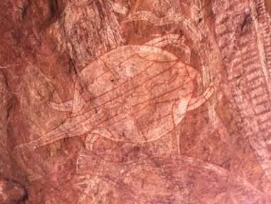 Australie : les secrets des peintures rupestres aborigènes