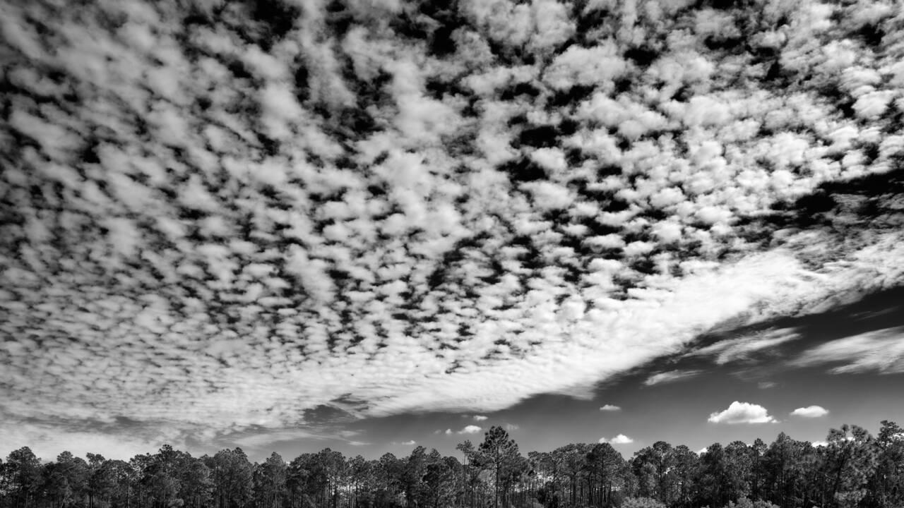 PHOTOS : Floride, dans le dédale des Everglades