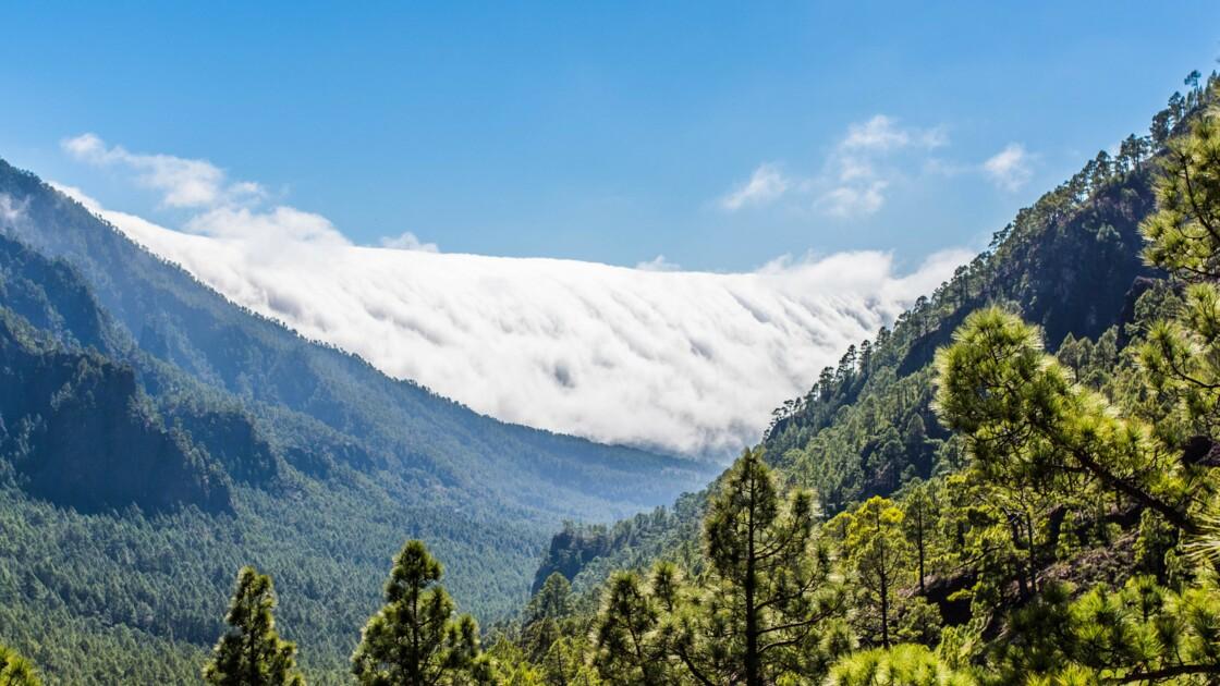 PHOTOS - Les dix plus beaux sites naturels des îles Canaries
