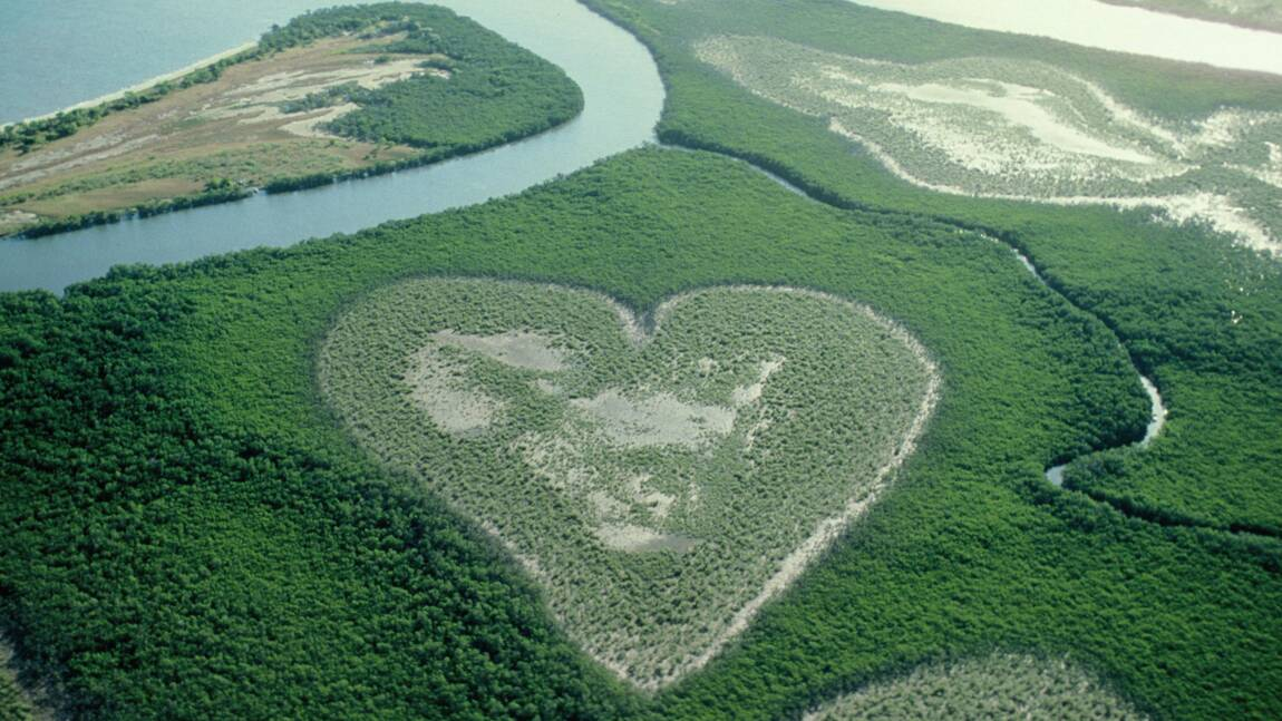 PHOTOS - Saint-Valentin : 8 cœurs nichés dans la nature