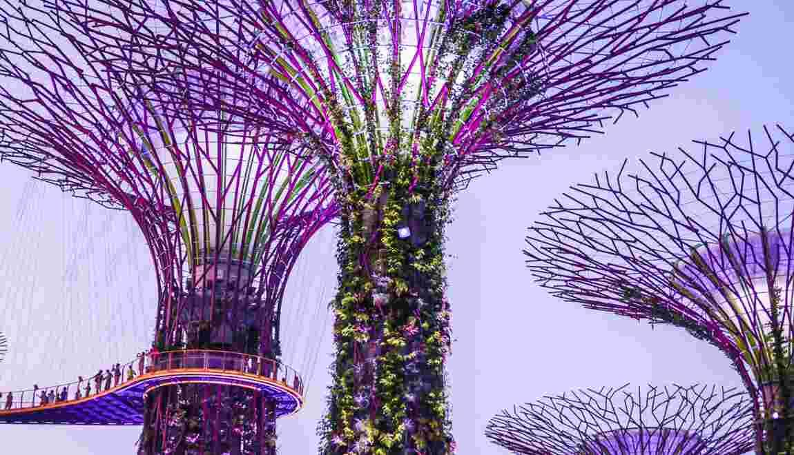 QUIZ - Testez vos connaissances sur Singapour