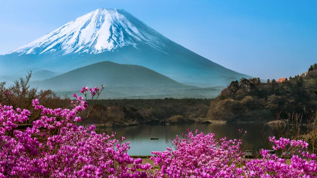 Connaissez-vous bien le Japon ?