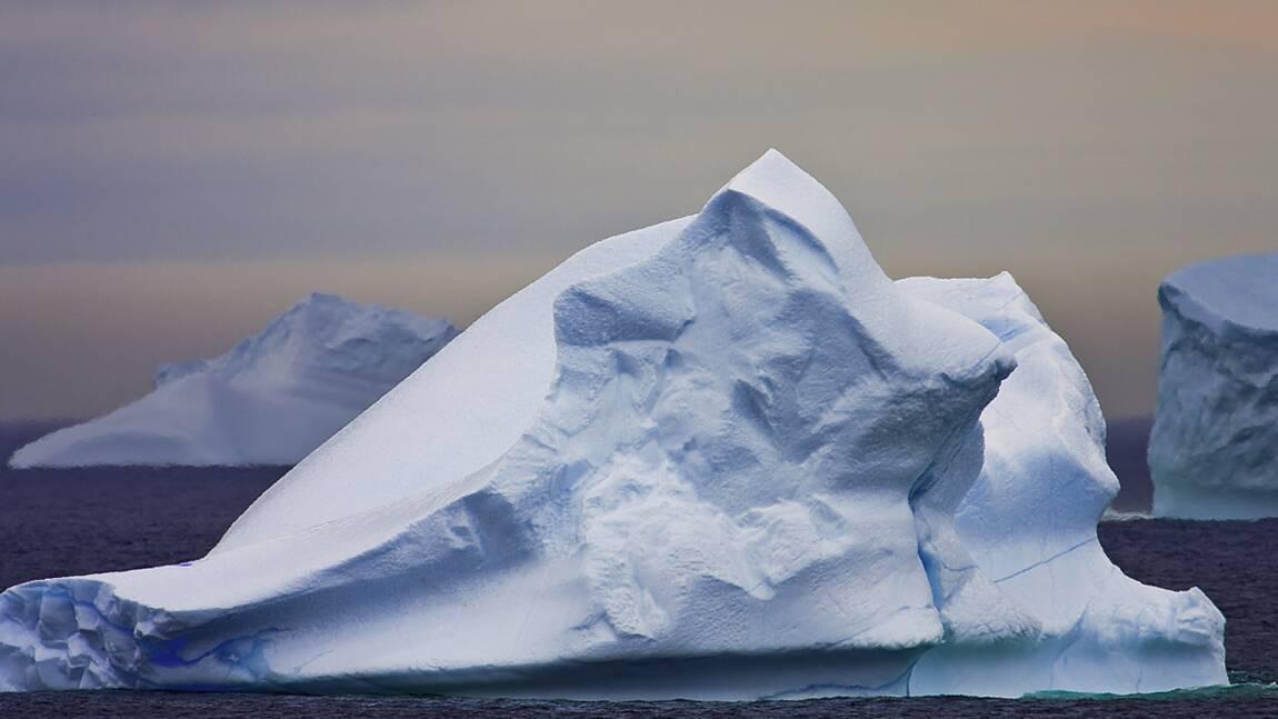Testez vos connaissances sur les icebergs