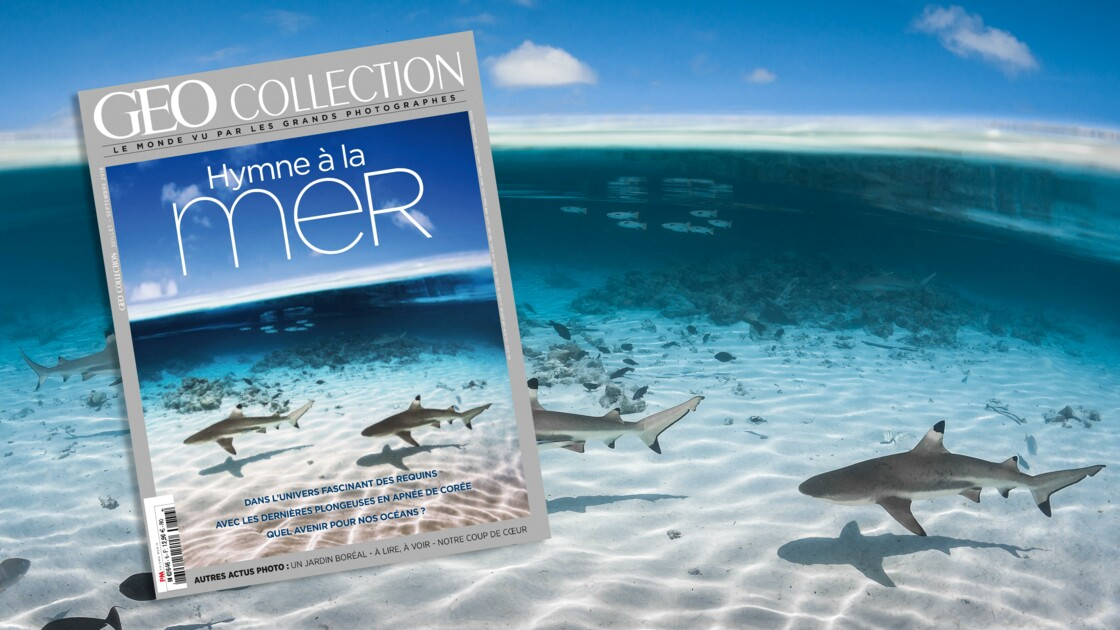 Hymne à la mer dans le nouveau GEO Collection