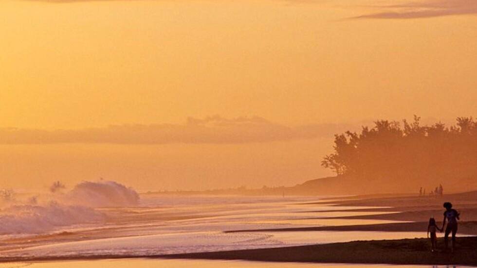 Les plus belles photos de la Communauté du 17 au 23 novembre 2012