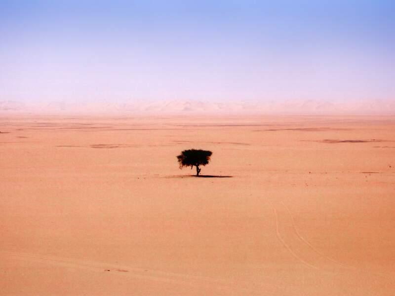 Diaporama n°1 : Algérie, dans le grand sud saharien