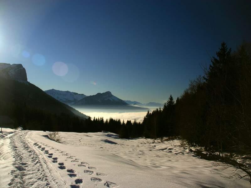 Diaporama n°1 : Les Alpes, un monde au sommet