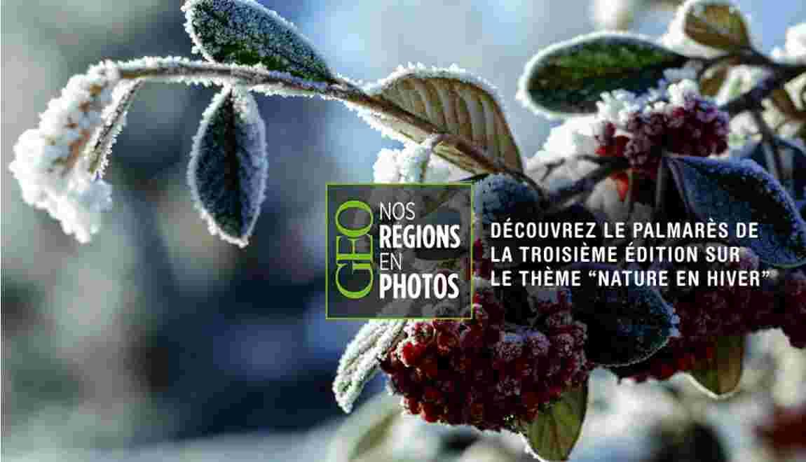"""Concours """"Nos régions en photos"""" : les gagnants de l'édition n°3 """"Nature en hiver"""""""