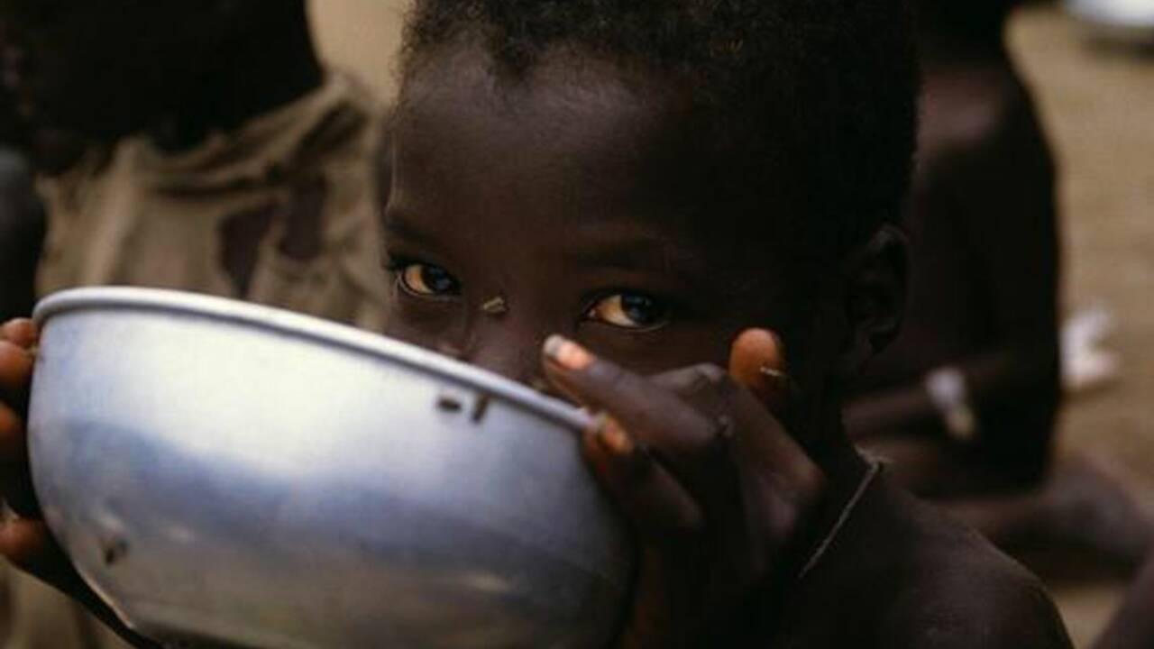 Crise alimentaire : plus d'un milliard de personnes souffriront de la faim en 2009