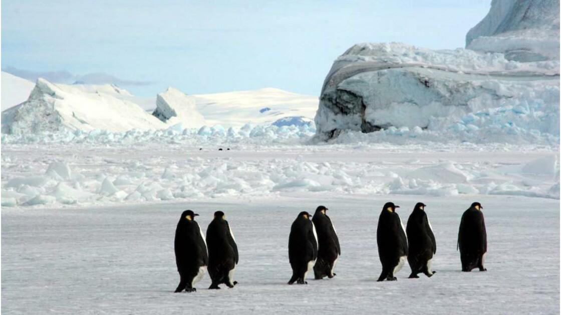 Vol au dessus de l'Antarctique