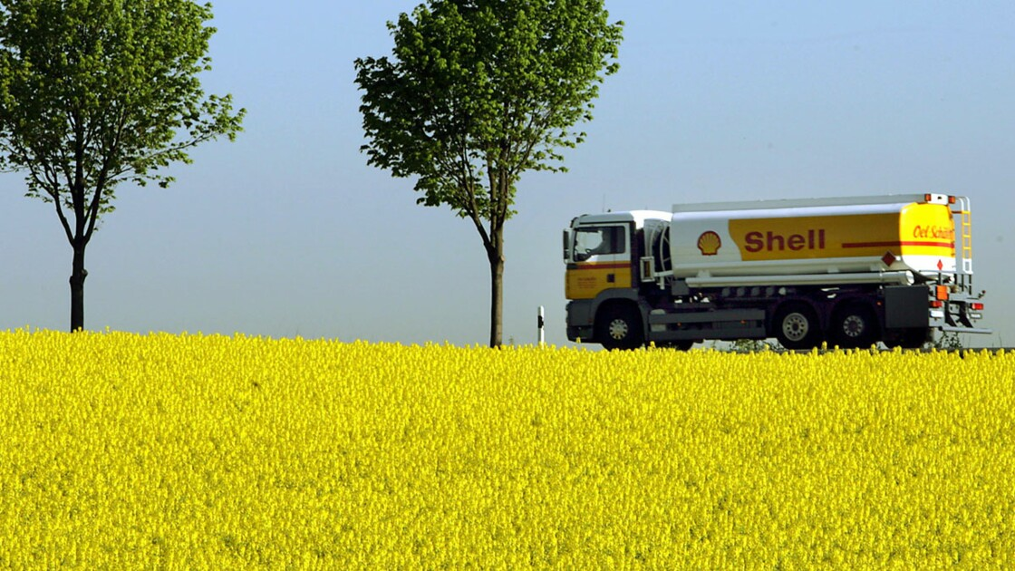 Agrocarburants : le rapport qui accuse