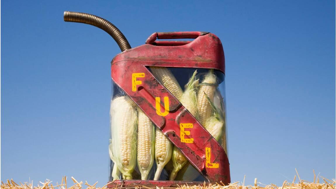 Des biocarburants pas si bio