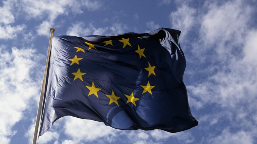 Élections européennes : quel programme pour l'environnement ?