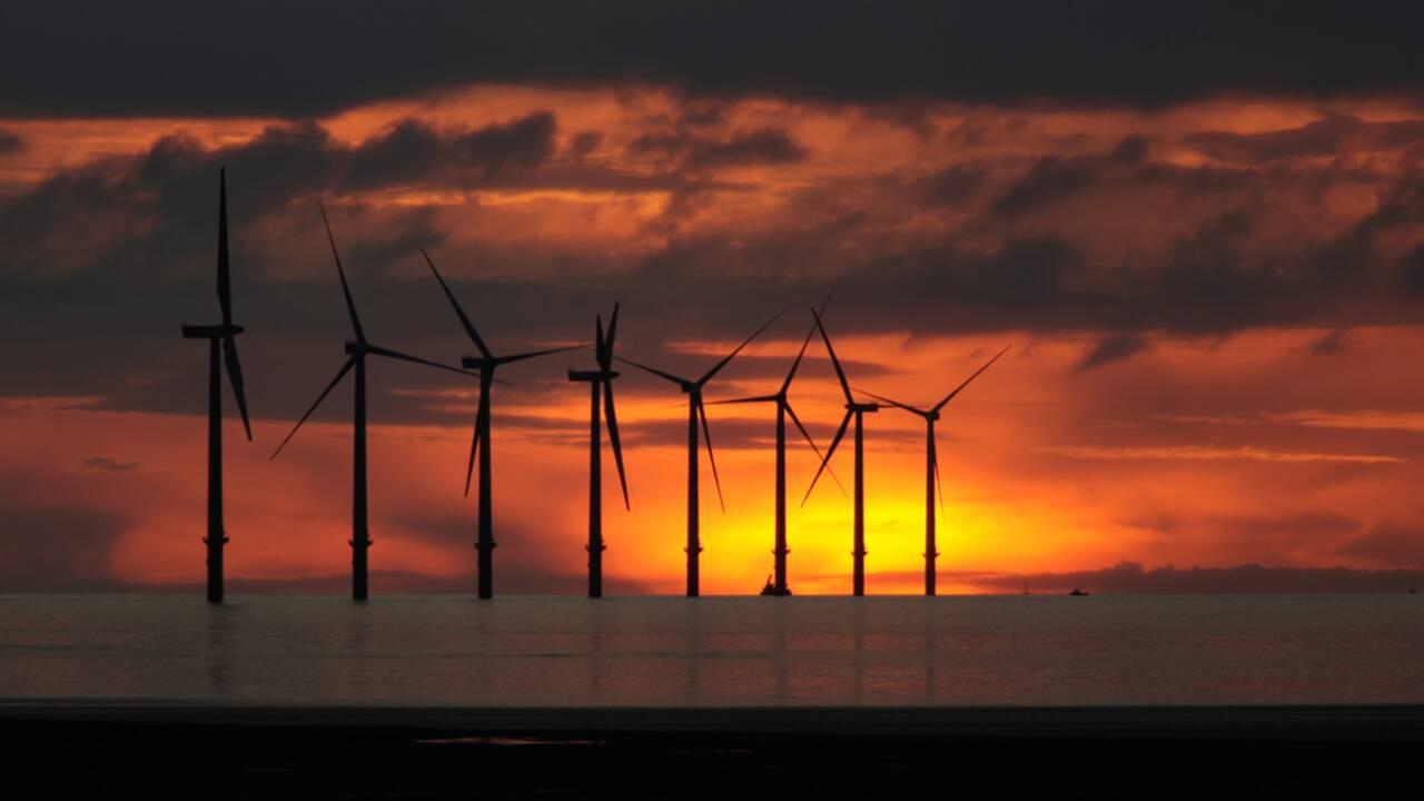 Les éoliennes n'ont plus le vent en poupe