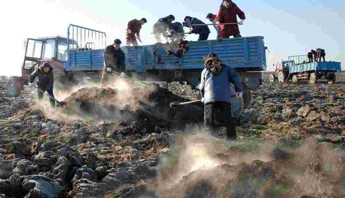 Protoxyde d'azote : l'agriculture menace la couche d'ozone