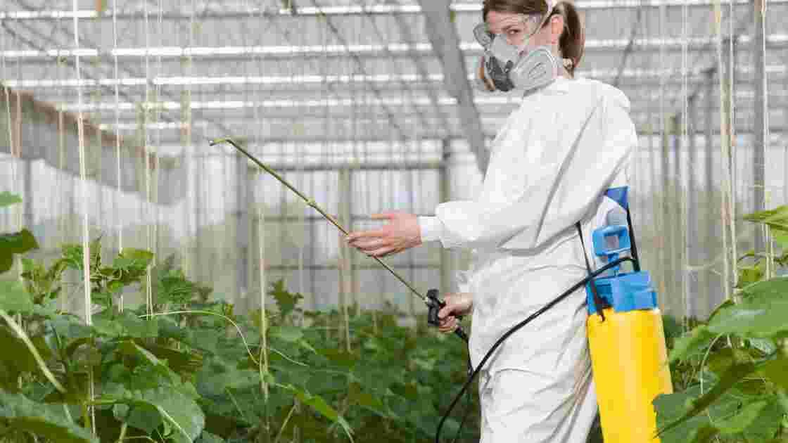 Agriculture: comment réduire de moitié l'usage de pesticides