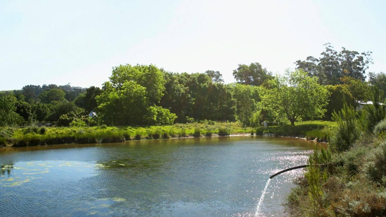Pollution : des rivières françaises à la dérive