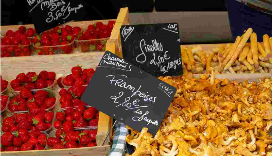 Alimentation bio : un marché en hausse de 25% en 2008