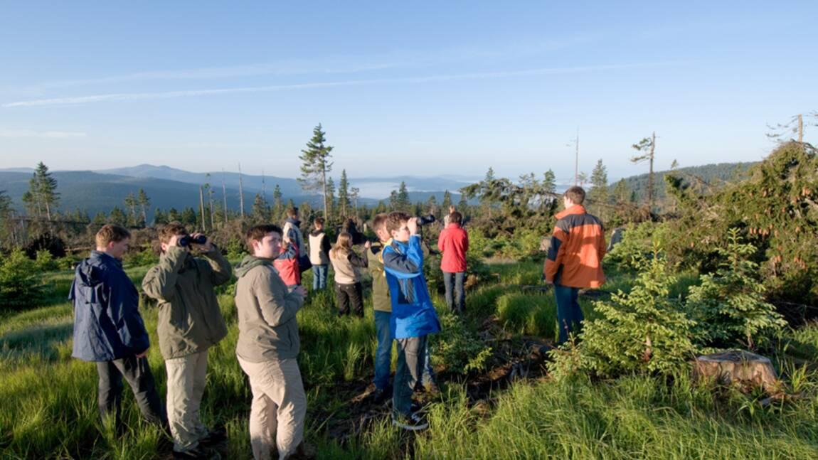 Evènement, le 22 mai 2010 : Journée d'action GEO pour la biodiversité