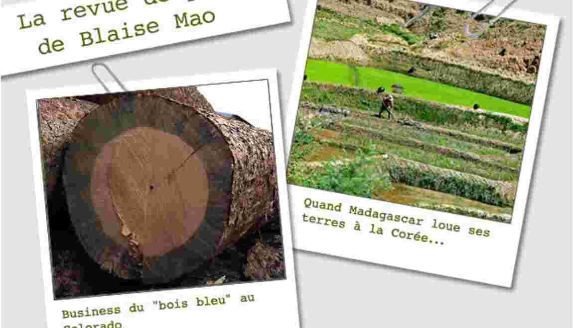 La revue de presse de Blaise Mao du 15 au 22 novembre