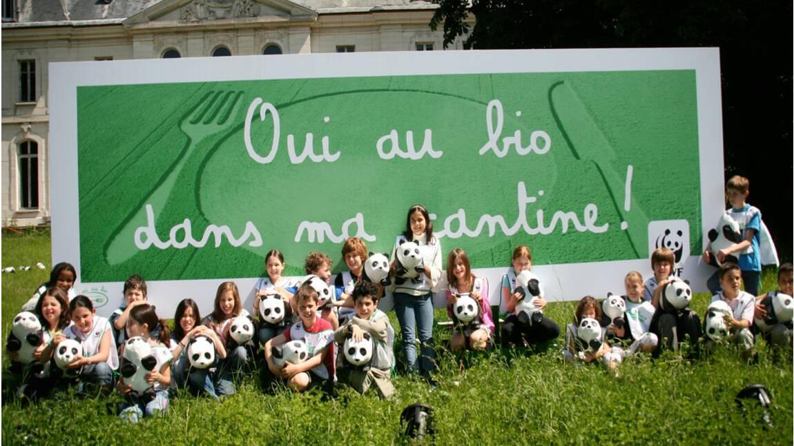 Le WWF pour le bio dans les cantines