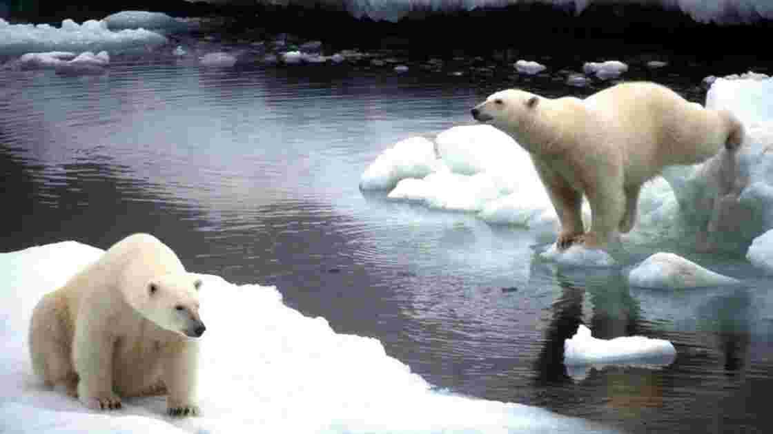 Réchauffement climatique : la nouvelle tendance touristique