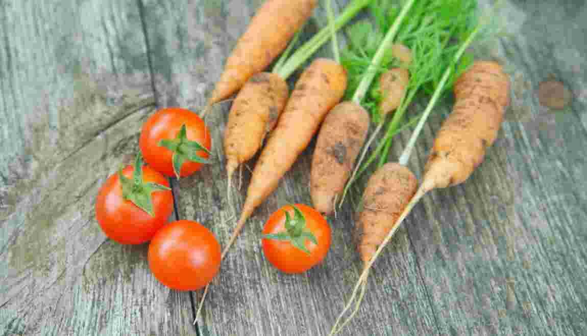 Produits bio : le marché allemand en croissance constante