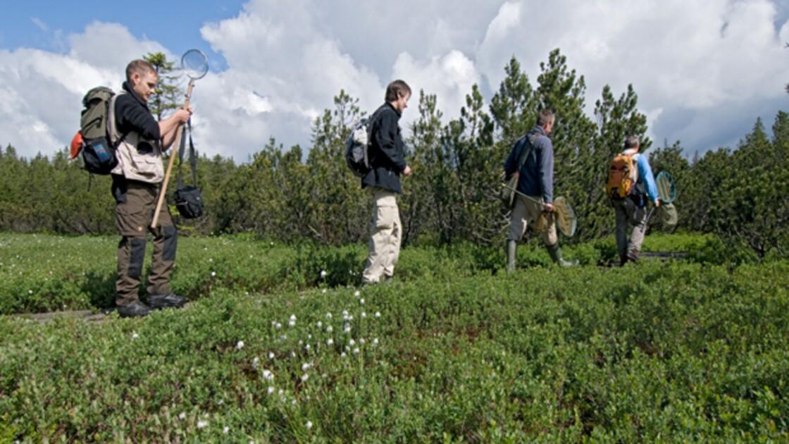 Programme de la journée d'action GEO pour la Biodiversité