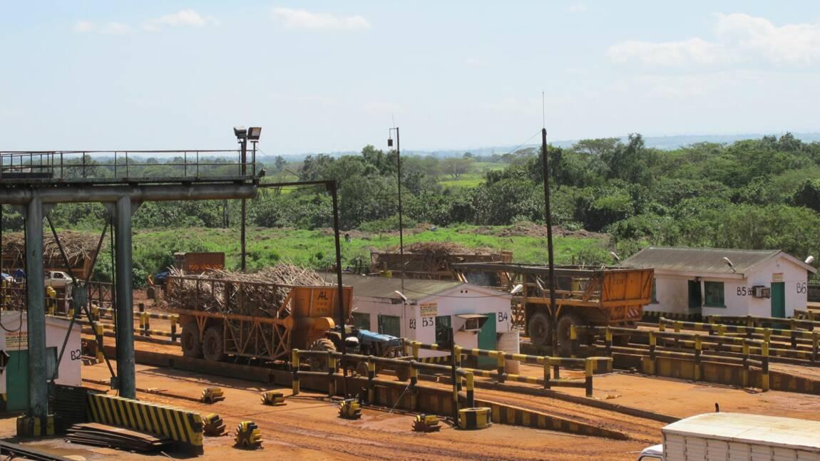 Une solution pour concilier développement économique et respect de l'environnement ?