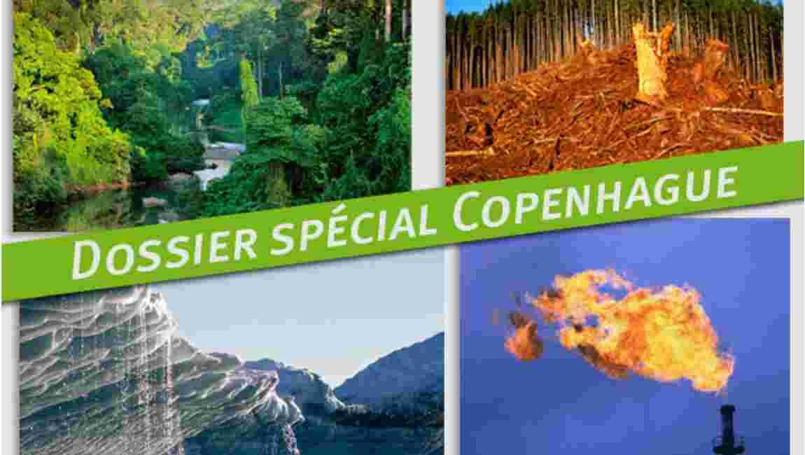 Copenhague : 3,5 milliards de dollars contre la déforestation