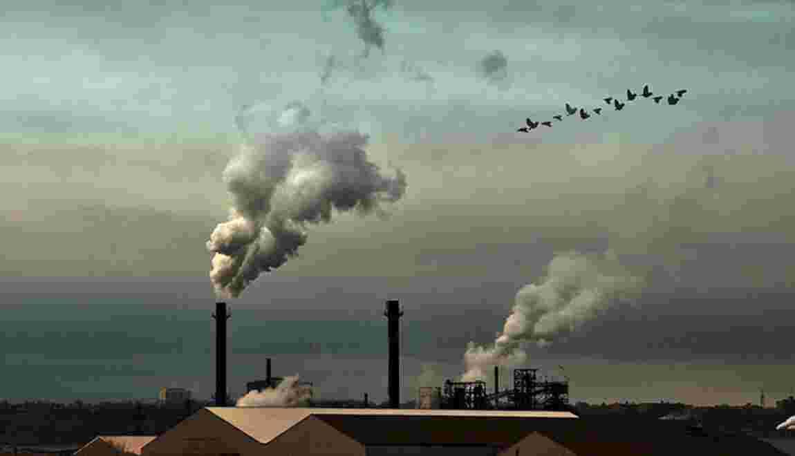 Le marché du carbone : mode d'emploi