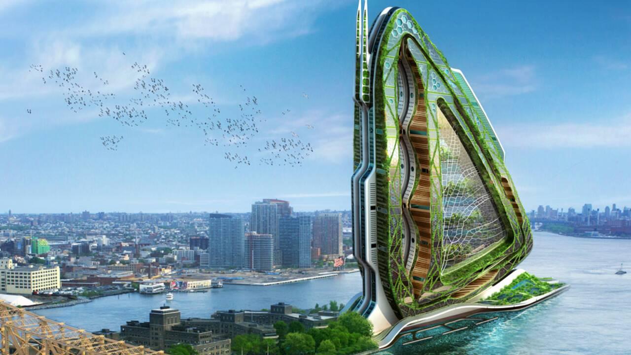 Dragonfly : la ferme urbaine bio et autosuffisante