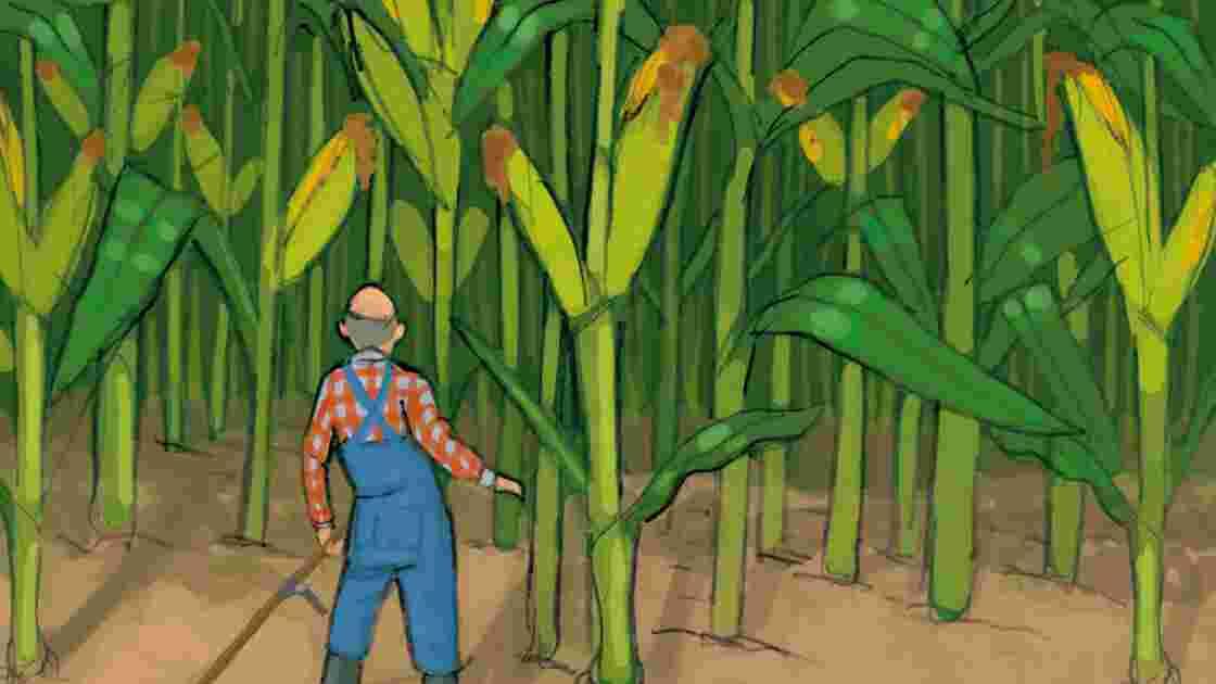 Les OGM, qu'est-ce que c'est ?