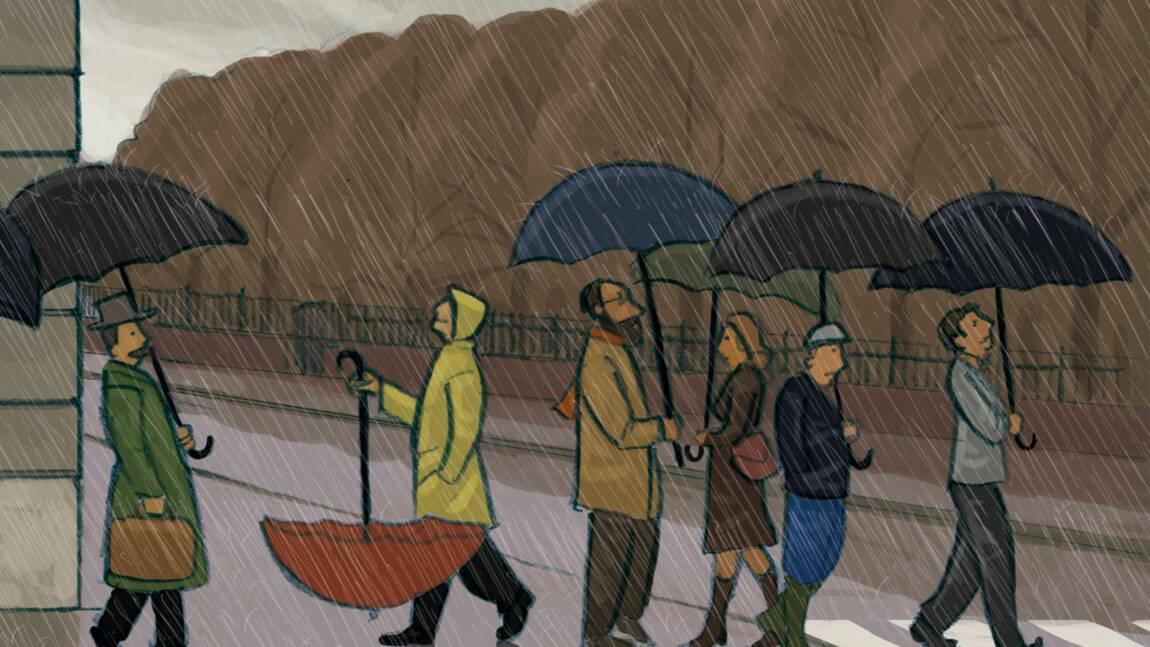 Récupérez les eaux de pluie