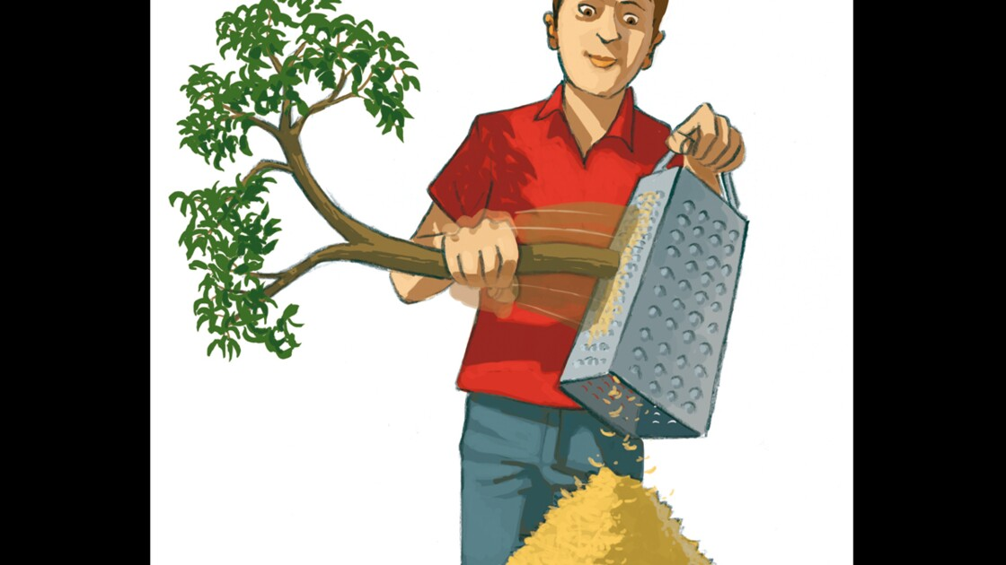 Choix des matériaux d'isolation : les panneaux en fibres de bois