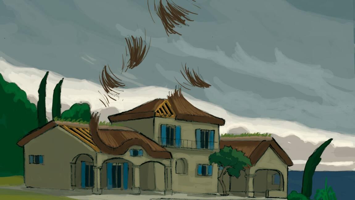 Le toit : comment le recouvrir ?