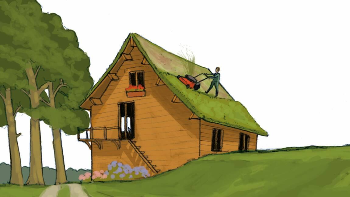 Les toitures végétalisées