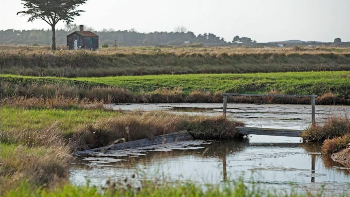 Pays de la Loire : les petits secrets des gens d'ici (3/4)