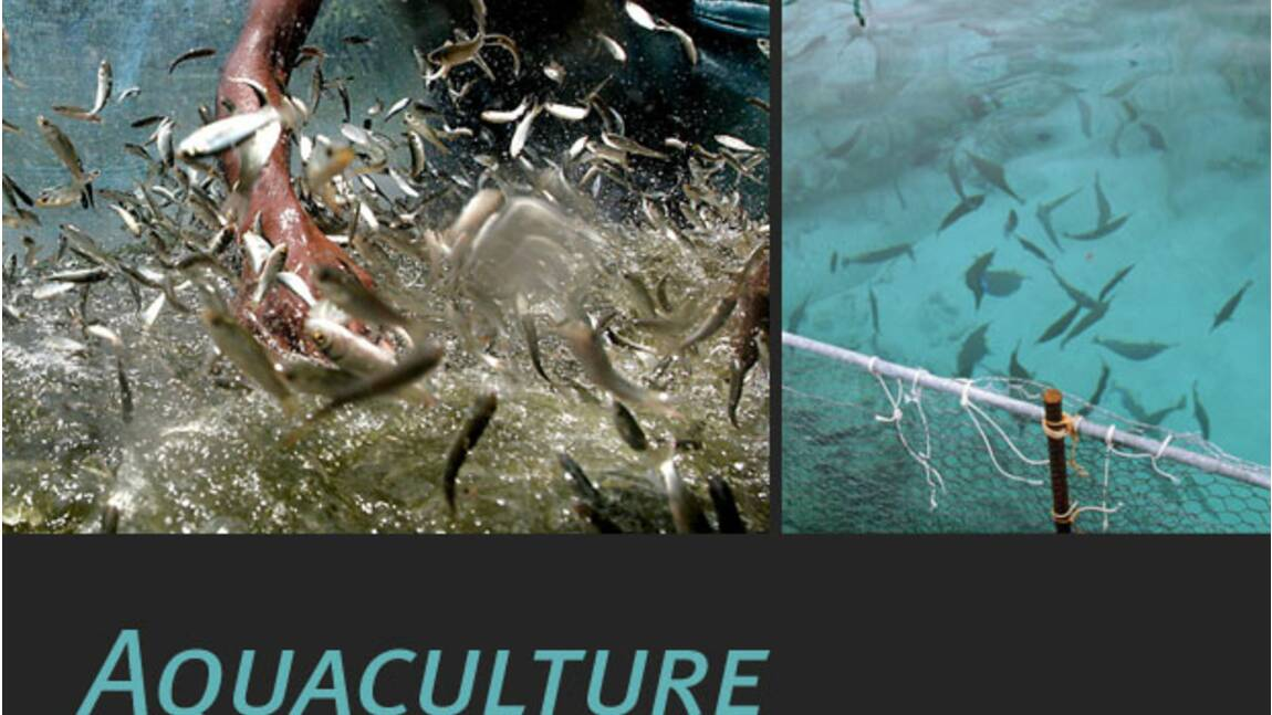 L'aquaculture, qu'est-ce que c'est ?