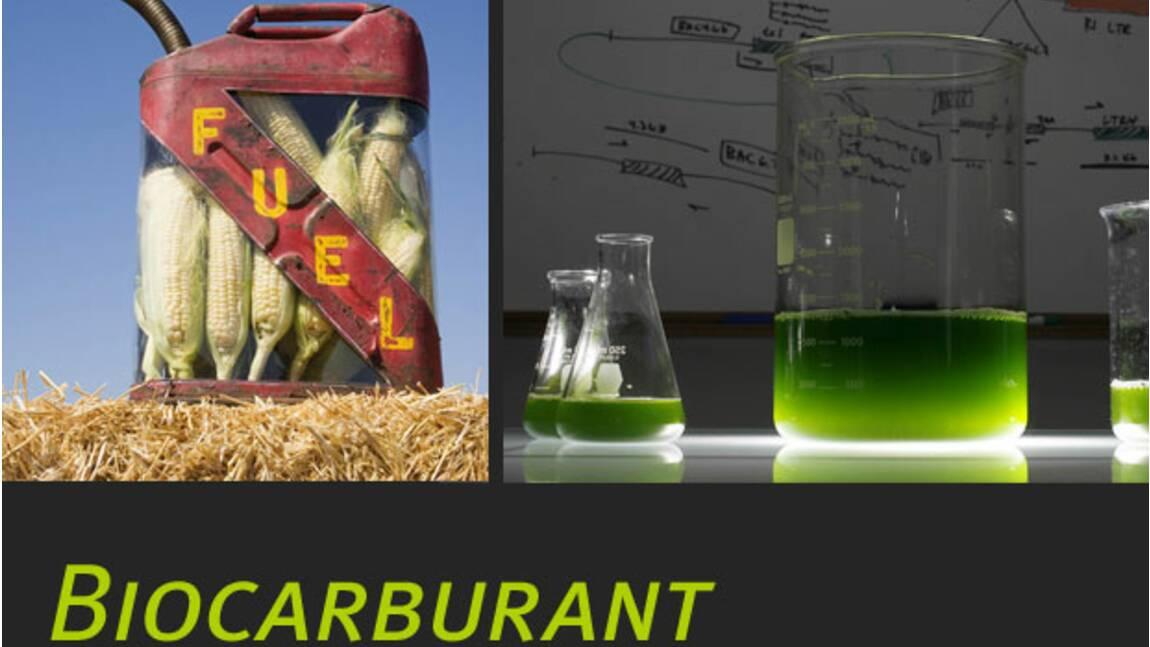 Le biocarburant : qu'est-ce que c'est ?