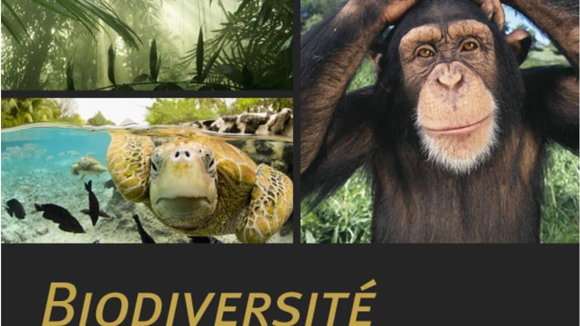 La biodiversité, qu'est-ce que c'est ?