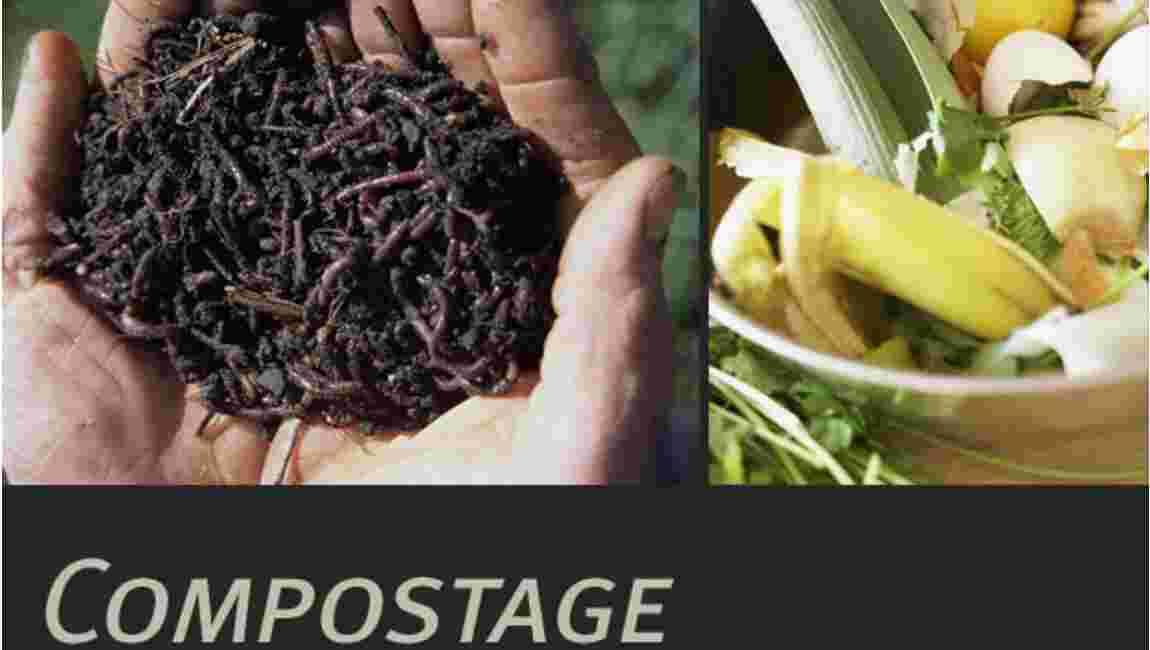 Le compost, qu'est-ce que c'est ?