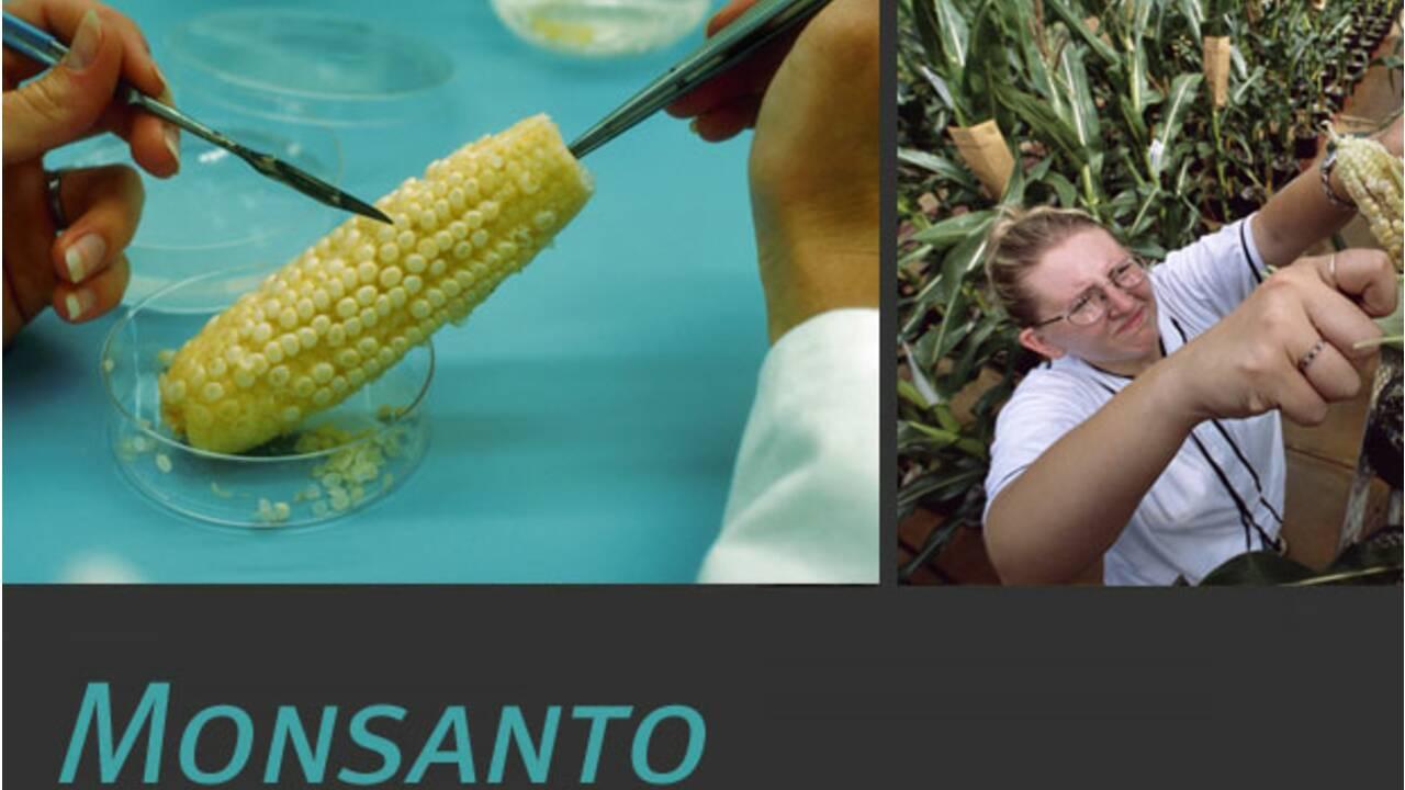 Monsanto : qu'est-ce que c'est ?