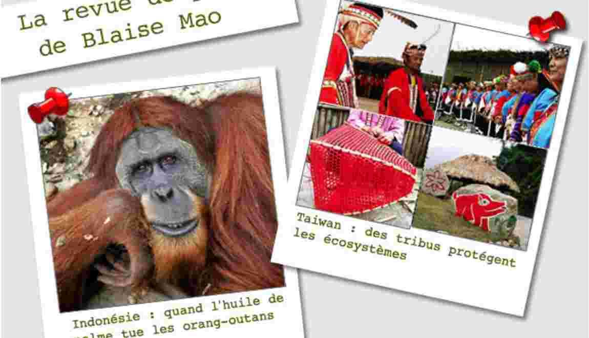 La revue de presse de Blaise Mao du 17 au 25 décembre