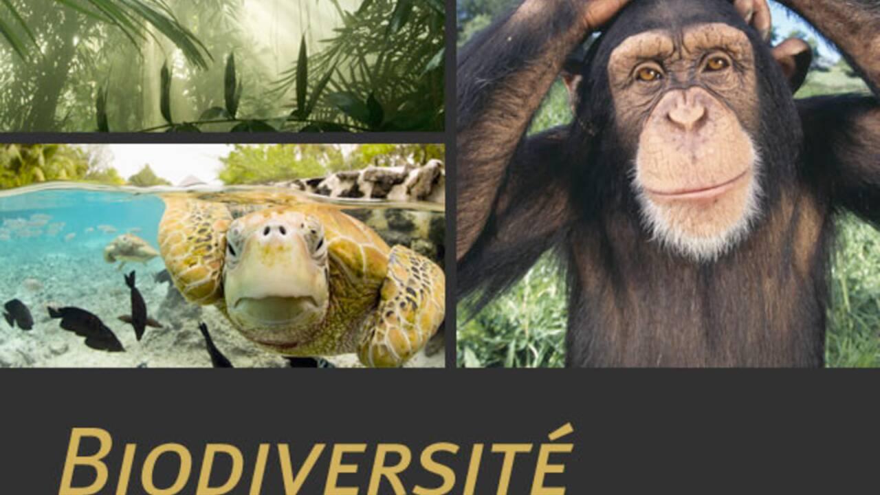 Biodiversité France : tout savoir sur la biodiversité en France